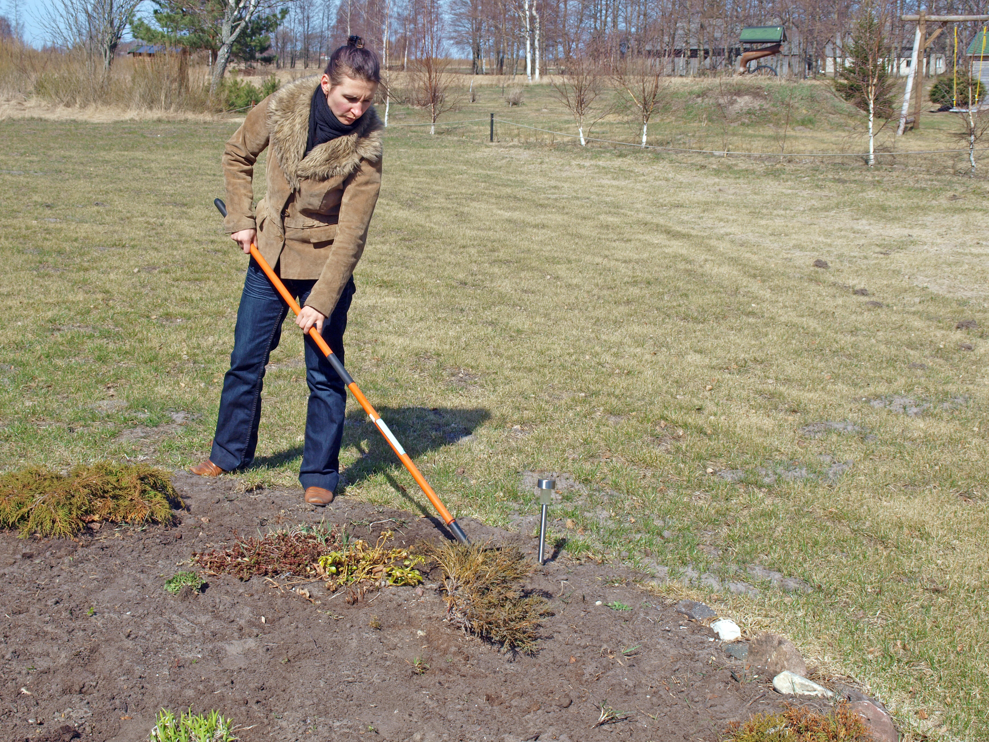 Loosening soil by rake